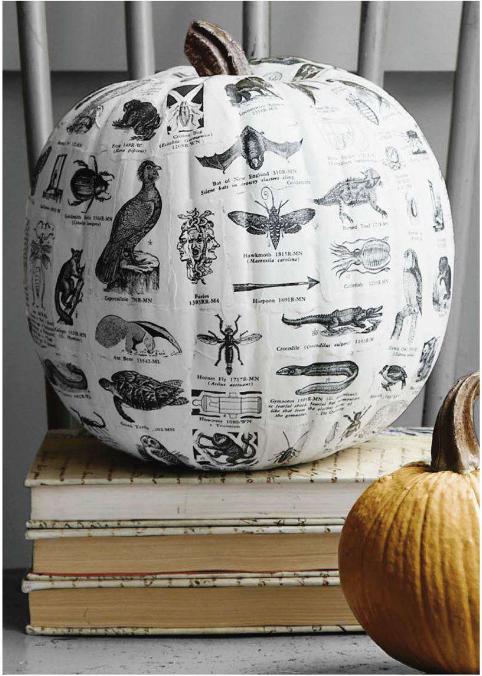 Decoupaged Pumpkin | Country Living | Pinterest Picks - No Carve Pumpkin Ideas