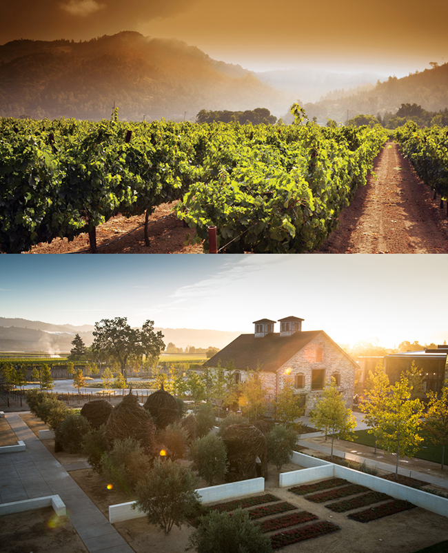 Napa Valley California | Top Five Travel Destinations