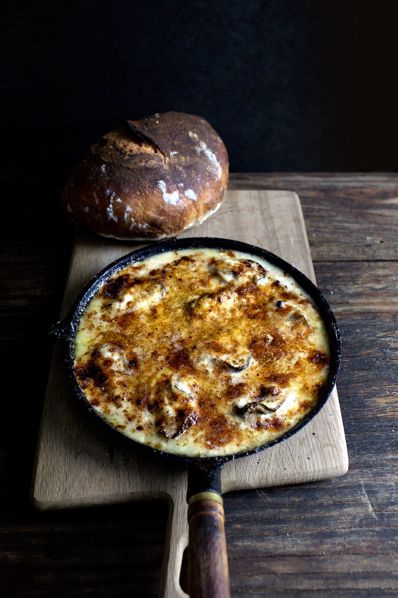 Three Cheese Oyster Gratin | Lady and Pups | Drool Worthy Thanksgiving Side Dishes