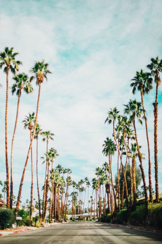Top Five US Spring Travel Destinations - Photo Diary: Palm Springs, CA | Urban Outfitters