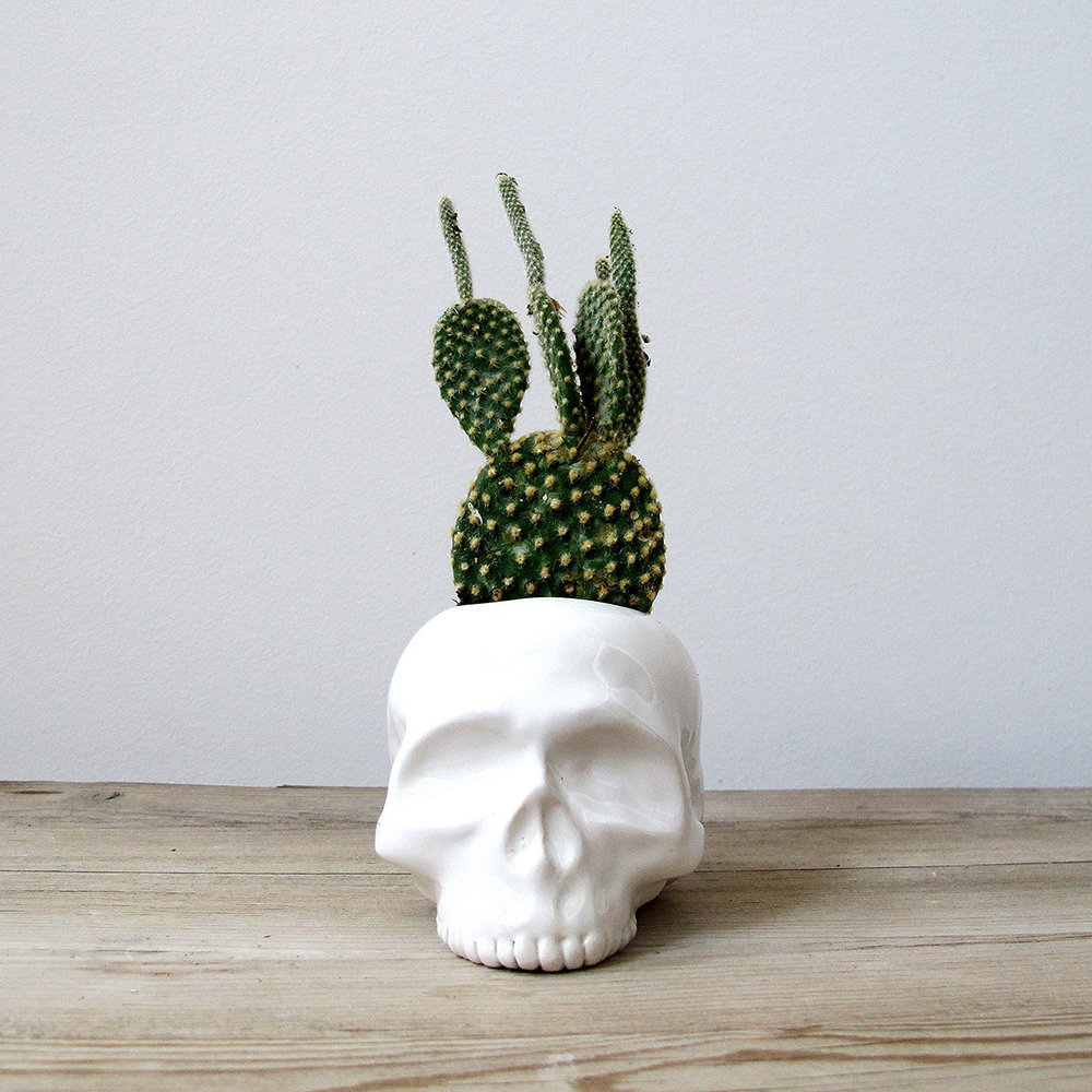 Human Skull Ceramic Planter | Mudpuppy - Spooktacular Halloween Home Decor