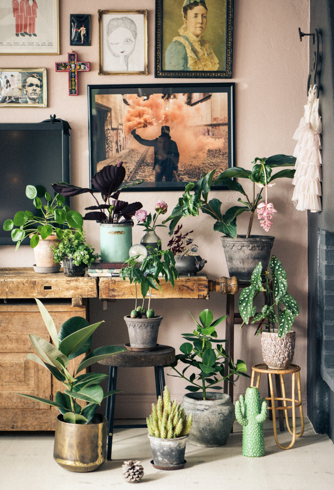 My Dream Team of Plants at Home | Elle Decoration Sweden - Pinterest Picks - Dreamy Gallery Walls - Gallery Wall Inspiration