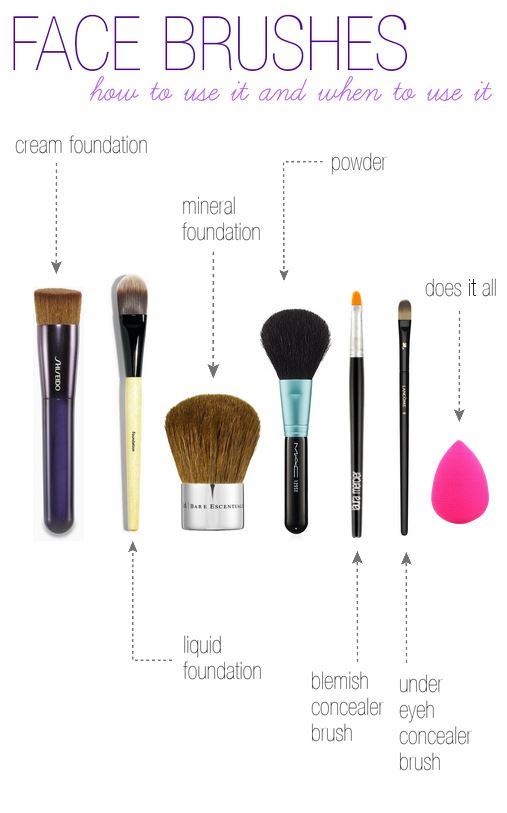 bobbi brown brushes uses. face brushes bobbi brown uses e