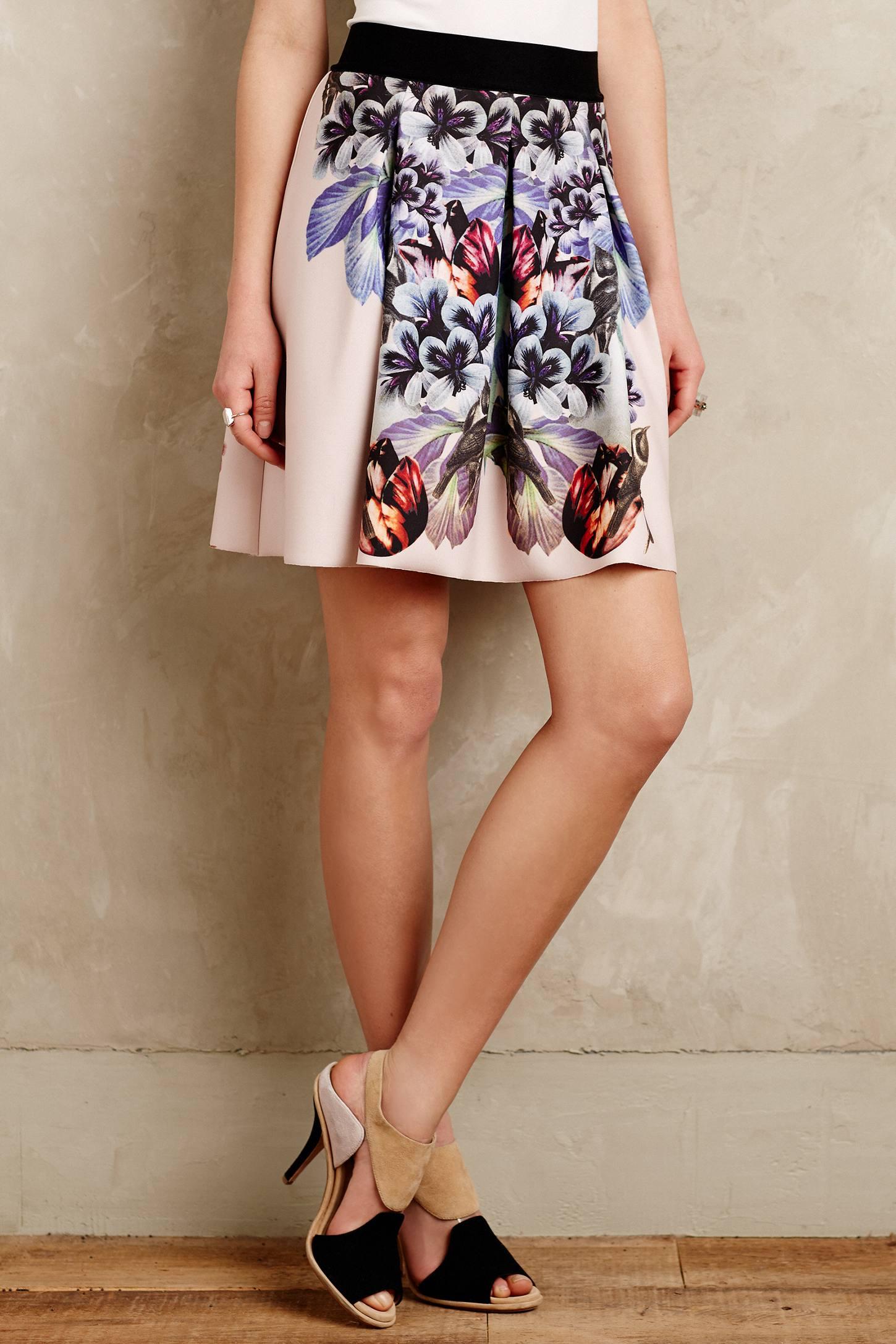 Anthropologie Birds Of Paradise Neoprene Skirt | Printed Flared Skirts