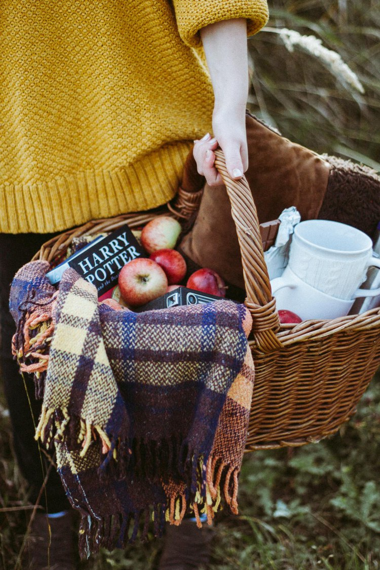 Picnic in the Woods | Daniel Faro | Fall Inspiration