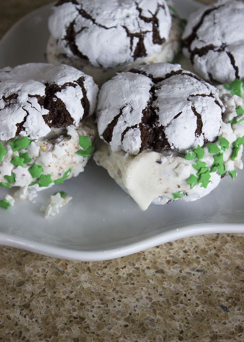 Chocolate Crinkle Cookie and Scout Mint Ice Cream Sandwich | Molly Moon's Holiday Ice Cream Sandwich | Favorite Blog Posts of 2015