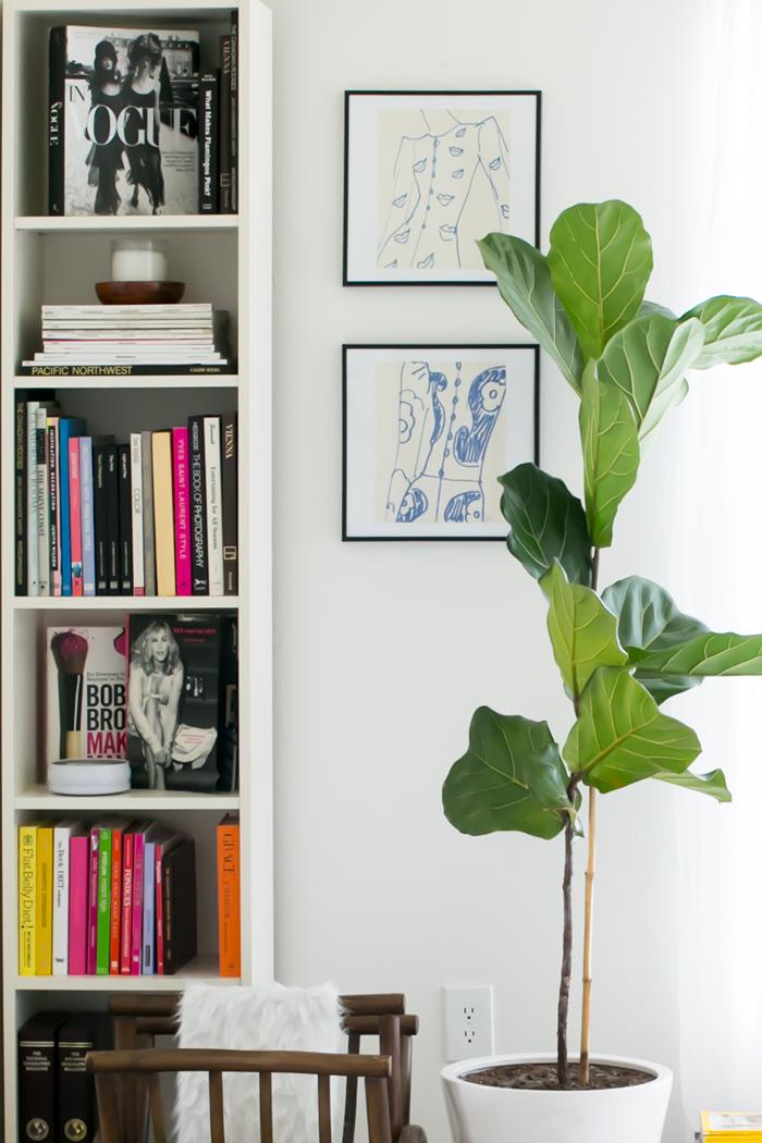 Fiddle Leaf Fig Tree Inspiration - Katherine Vo's Orange County Home Tour | The Everygirl
