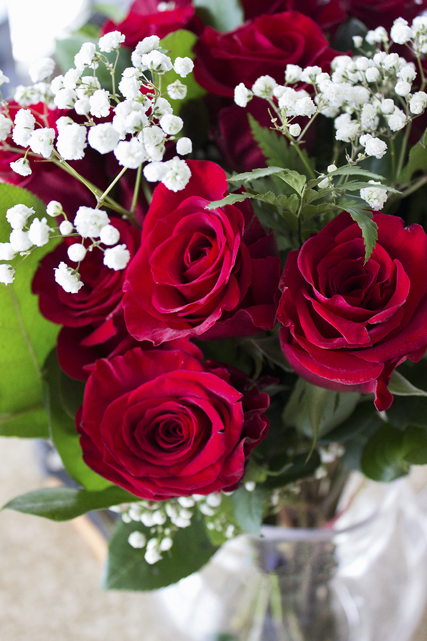 Whole Foods Whole Trade Double Dozen Red Roses Low Key Valentine's Day with Style and Cheek 2