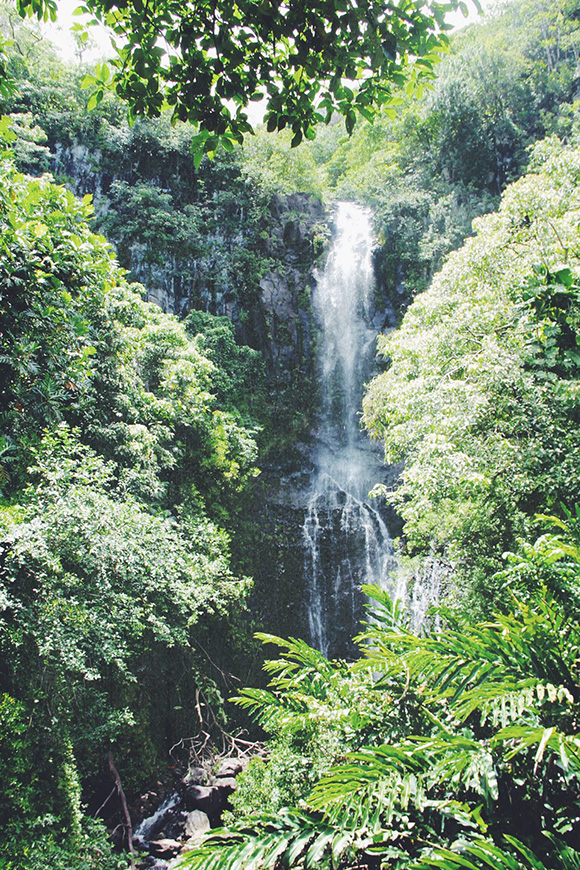 Top Five US Spring Travel Destinations - Road To Hana: Discovering A Secret Gem in Maui | Free People