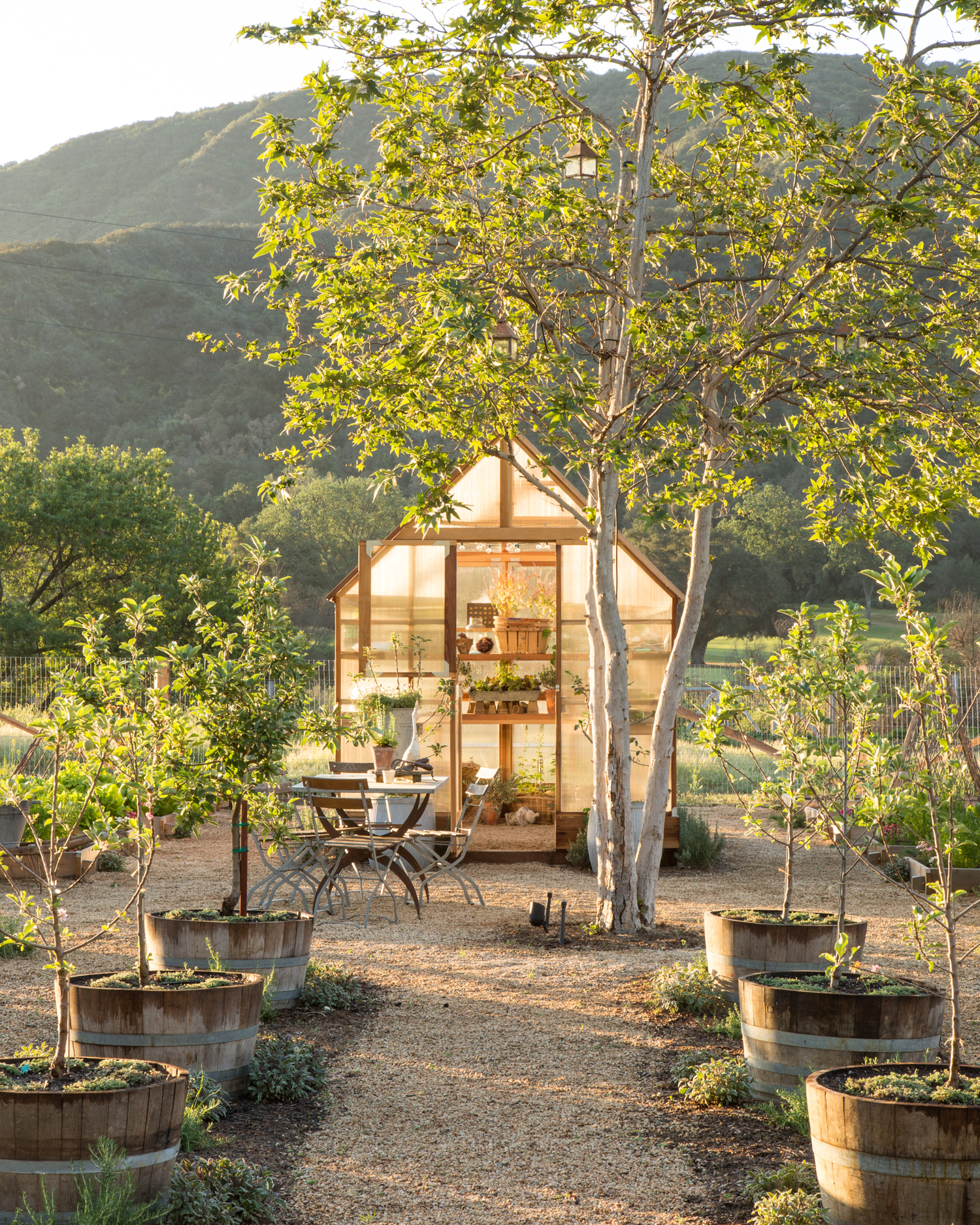 Greenhouse Inspiration - Greenhouse in pebble covered garden with boxplanters in meadow with rolling hills in background.