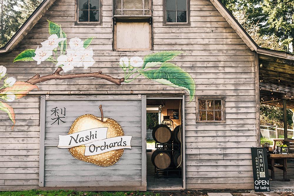 Nashi Orchards on Vashon Island photo by Danny Owens - Vashon Island Travel Guide | Style and Cheek